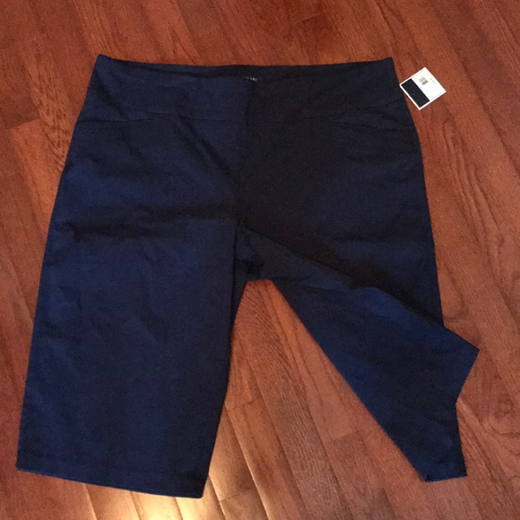 4b840005dfa15 Kaari Blue Pull On Wide Leg Capris 20W plus size